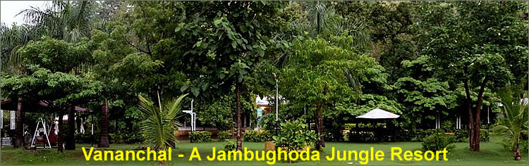 Vananchal Jambughoda Jungle Resort